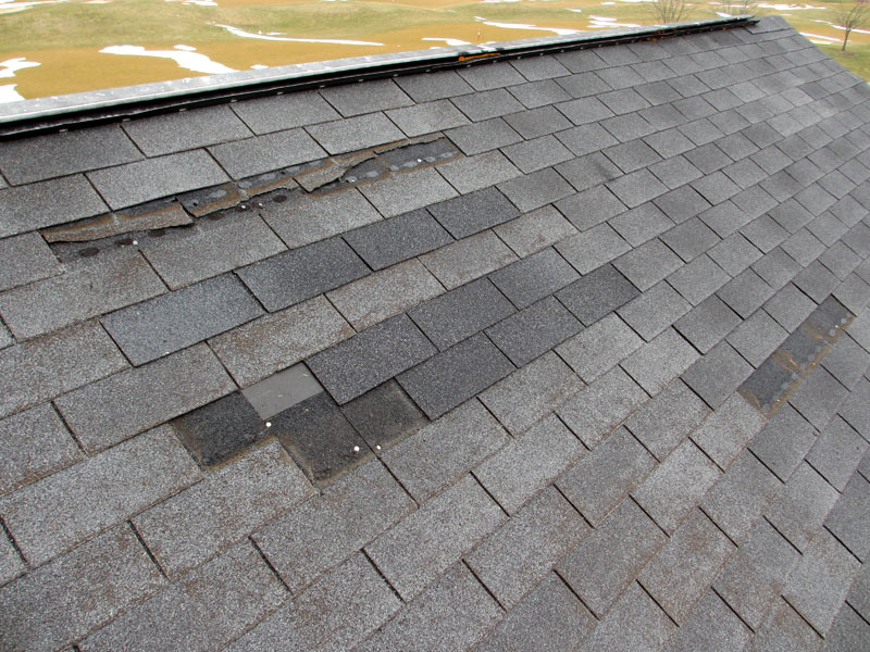 5 Roofing Maintenance Tips That Will Save You Money
