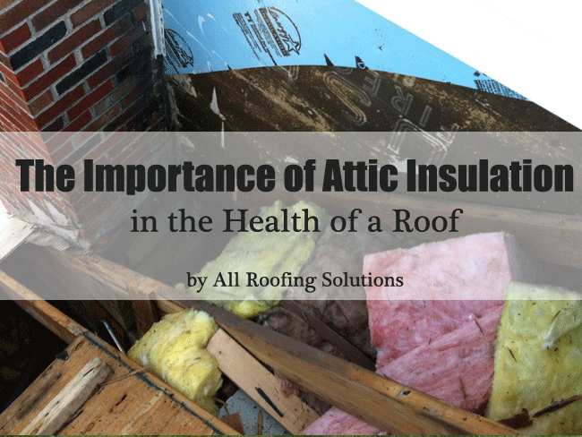 The Importance of Attic Insulation in the Health of a Roof